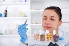 Laboratoriummedewerker in het laboratorium van van voedselkwaliteit De analyse van de celcultuur aan test genetisch gewijzigd zaa royalty-vrije stock fotografie