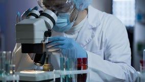 Laboratoriumtechnicus die die onderzoek leiden op bloedmonsters, kwaliteitsgeneeskunde worden gebaseerd stock afbeelding