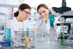 Laboratory. Scientists working at the laboratory