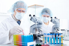 In a laboratory Stock Image