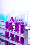 In laboratory Royalty Free Stock Photography