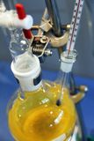 Laboratory. Chemical laboratory with yellow liquid and bottles Royalty Free Stock Photo