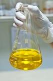 Laboratory. Stock Photos
