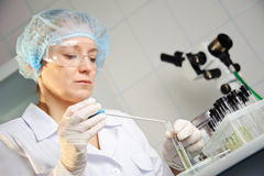 In the laboratory. Stock Photo