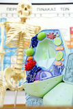 Laboratory. Anatomy / biology lab with human skeleton and cell Stock Photography