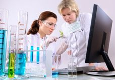 Laboratory. Group of scientists working at the laboratory Stock Photo