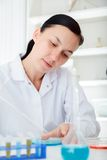 Laboratory assistant analyzing a sample Royalty Free Stock Photography