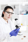 Laboratory assistant in the laboratory of of food quality Stock Photography