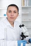 Laboratory assistant in the laboratory of of food quality.Cell culture assay to test genetically modified seed. Toning image stock image