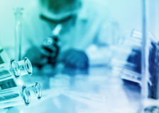 Laboratory assistant in the laboratory Royalty Free Stock Images