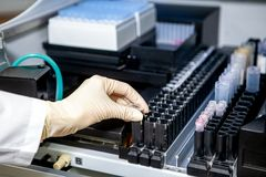 The laboratory assistant places the sample in the apparatus for analysis, close-up royalty free stock photography