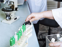 Laboratory assistant puts test tubes. Royalty Free Stock Photo