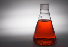 Laboratory Beaker Royalty Free Stock Photo