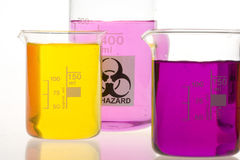 Laboratory beakers Royalty Free Stock Photo