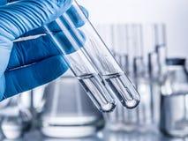 Laboratory beakers in analyst`s hand. Laboratory beakers in analyst`s hand in plastic glove royalty free stock image