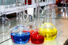 Laboratory beakers with the coloured liquid Royalty Free Stock Image