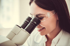 At the laboratory Stock Photography