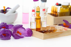 Laboratory bench with crocus flowers Royalty Free Stock Photo