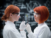 Laboratory comparative analysis stock photography