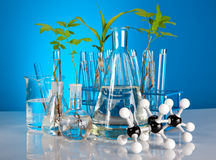 Laboratory equipment Stock Image