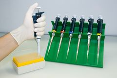 Laboratory equipment, pipettes. A set of pipettes, tips in the box, putting a tip on a pipette Stock Image