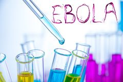 Laboratory examination of Ebola Royalty Free Stock Images