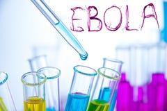 Laboratory examination of Ebola Royalty Free Stock Images