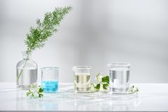 Laboratory experiment and research with leaf, oil and ingredient. Extract for natural beauty and organic skincare product the blank bottle for label ,bio royalty free stock photo