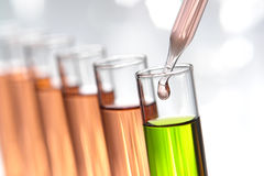 Laboratory Experiment in Science Research Lab Stock Photography