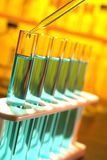 Laboratory Experiment  in Science Research Lab Royalty Free Stock Image