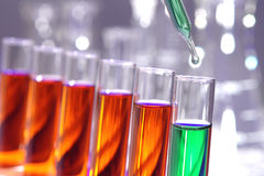 Laboratory Experiment in Science Research Lab Royalty Free Stock Photos