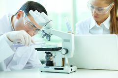 Laboratory experiment stock image
