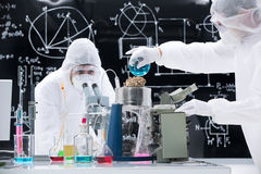Laboratory experimental testing Royalty Free Stock Photo