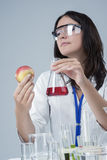 Laboratory Female Staff Dealing with Apple Specimen and Test Liquid in Flask Royalty Free Stock Photos