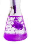 Laboratory flask. With purple color in it Royalty Free Stock Photography