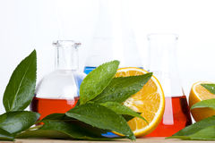 Laboratory Flask And Orange Royalty Free Stock Photos