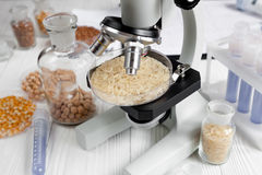 Laboratory for food analysis cereals test no one wooden background. Close up royalty free stock image