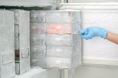 Laboratory freezer for keep isolated pathogen. In ultra low temperature Royalty Free Stock Photo