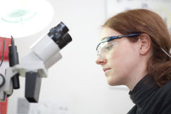 In the laboratory Stock Photography