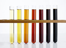 Laboratory glass test tube and liquid Royalty Free Stock Photography