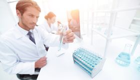 Busy group of researchers carrying out experiments Stock Photo