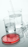 Laboratory glassware. Spot color, a studio shot Royalty Free Stock Images