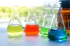 Laboratory glassware with colorful liquids Royalty Free Stock Images