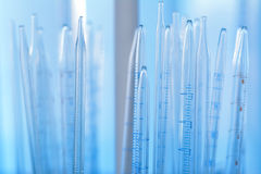 Laboratory glassware for medical research Royalty Free Stock Photography
