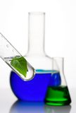 Laboratory glassware with plant Stock Photo