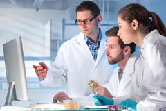 Laboratory. Group of scientists working at the laboratory stock photos