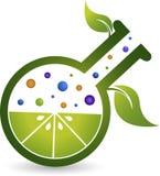 Laboratory leaf. Illustration art of a laboratory leaf with liquid  background Royalty Free Stock Image