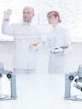 Laboratory lessons Stock Images