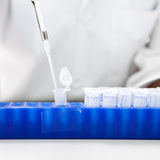 Laboratory micro pipette. Drops the biological solution in eppendorf Royalty Free Stock Photos