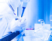 Laboratory of Microbial detection operation Stock Photography